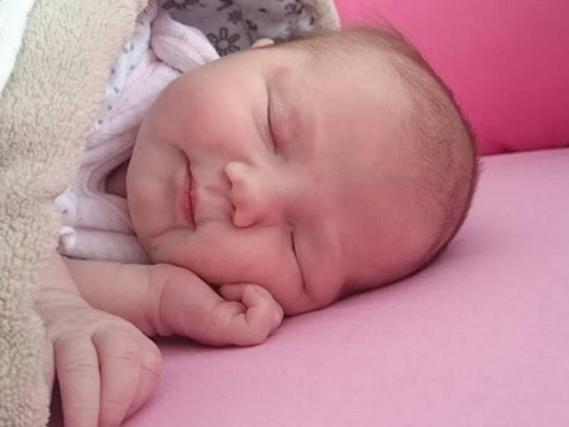 Eliška Šopíková se narodila v ústecké porodnici 20.1.2017 (16.40) . Měřila 48 cm, vážila 3,29 kg.
