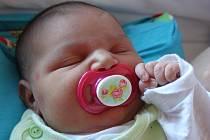 Elen Mirgová se narodila v ústecké porodnici 20.4.2015 (0.52) mamince Radce Podlucké. Měřila 51 cm, vážila 4,64 kg.