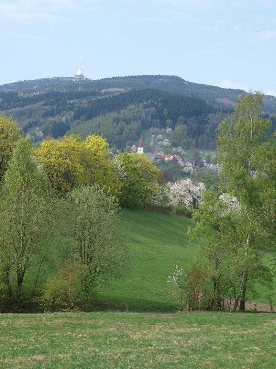 Světlá pod Ještědem je nádherná když jaro zelení ozdobí stromy a květy třešní.
