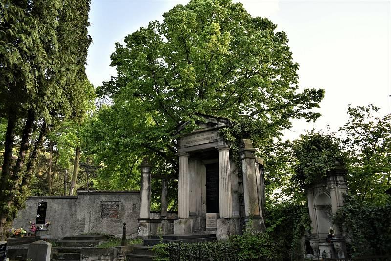 Hrobka Alexandra Wölfela na střekovském hřbitově.