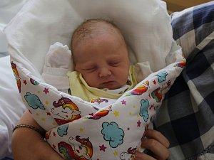 Renáta Žemličková se narodila v ústecké porodnici 17.4.2018 (12.36) Pavlíně Ančincové. Měřila 50 cm, vážila 2,95 kg.