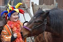 Na děti budou na statku ve Skupicích čekat zvířátka, která si budou moci pohladit jako při Masopustním veselí 1. března letošního roku.