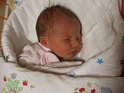 Darina Jedličková se narodila Andree Jedličkové z Krupky 8.ledna v 0.55 hod. v ústecké porodnici. Měřila 48 cm a vážila 2,7 kg
