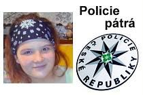 Policie pátrá po pohřešované Michaele Brandejsové