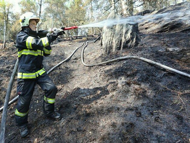 Požár lesního porostu vTiských stěnách zaměstnal desíkty hasičů.