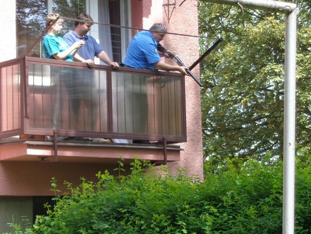 Strážník z balkonu zastřelil divoké prase.