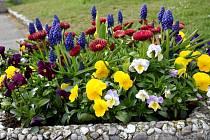Soutěž TOP květinové Ústí 2021 je v plném proudu.