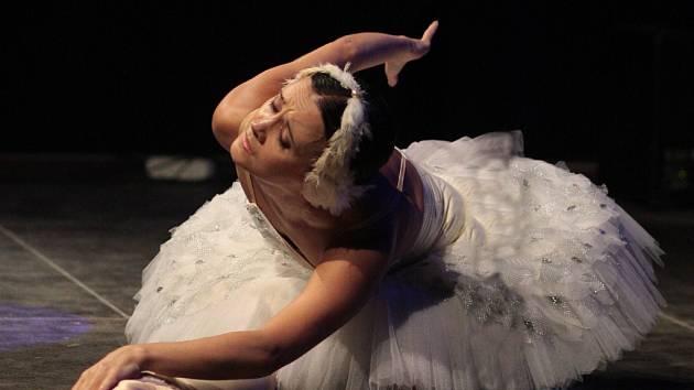 Rita Pleškova tančila Umírající labuť (Labutí jezero) na Barevné planetě.