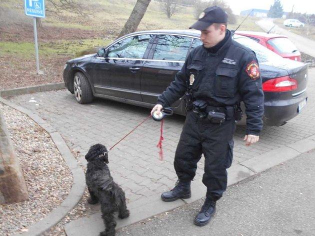 Strážníci odvezli psa do městského útulku.