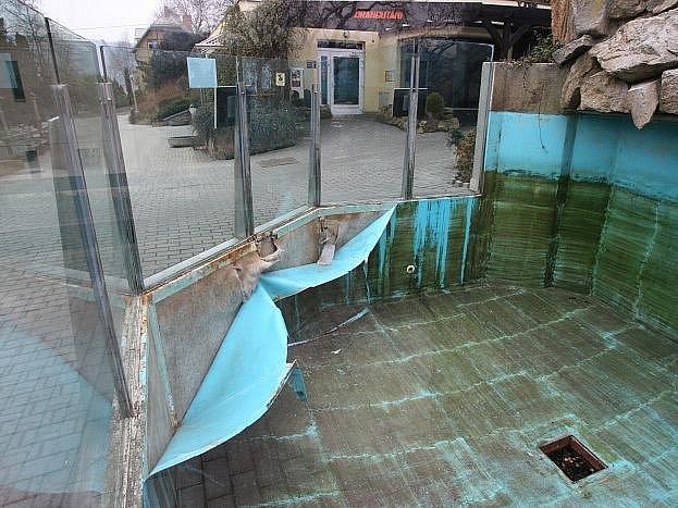 Bazén pro lachtany potřebuje nutně opravit.