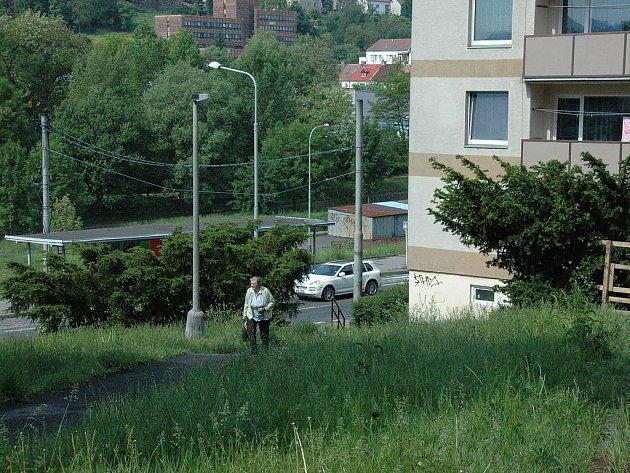 Zatímco jedna část sídliště má trávník krásně posekaný, druhá část na údržbu teprve čeká.