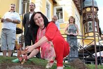 Svou vlastní vinici v pátek založilo město Ústí.