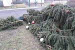 Neznámý vandal skácel v noci z úterý na středu vánoční strom ve Velkém Březně.