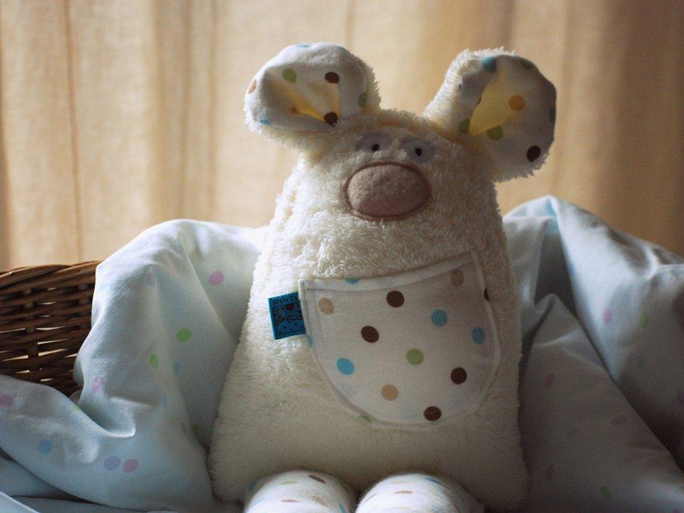 Autorka hraček, vítězka soutěže pro začínající podnikatele Rozjezdy Ústečanka Pavla Hazuchová Kudrlová, měla před Vánocemi napilno.