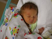 Damien Havel se narodil v ústecké porodnici 17. 2. 2017(8.28) Anetě Lisické. Měřil 47 cm, vážil 2,70 kg.