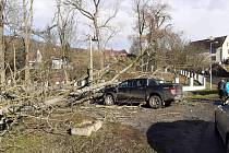 V Homoli U Panny spadl strom na auto místního zemědělce
