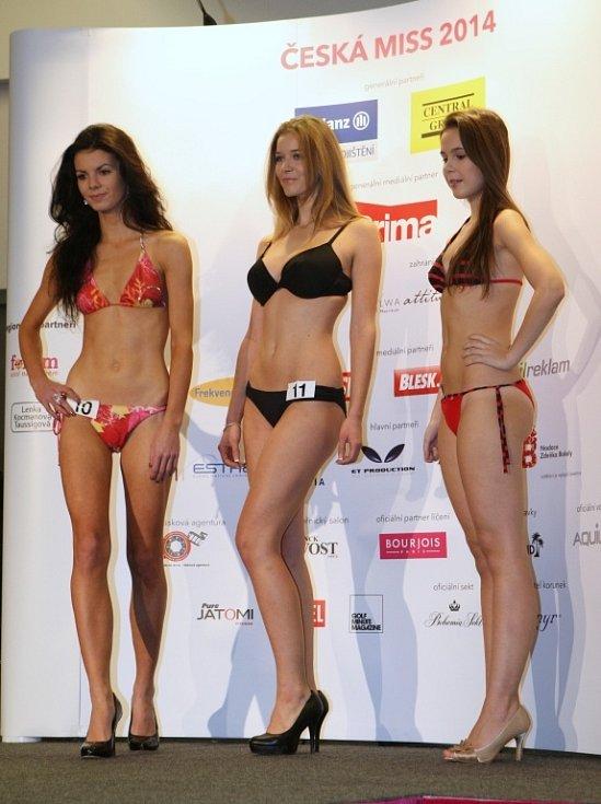 Krajský casting na Českou Miss 2014 v Ústí nad Labem.