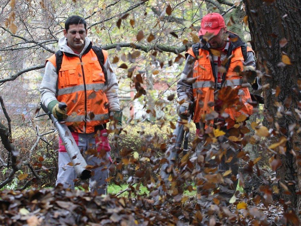"""Úklid listí a spadaných větví provádí v městských obvodech """"vysoutěžené"""" firmy i pracovníci na veřejně prospěšné práce."""