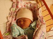 Alice Holcová se narodila Bohumile Holcové z Dolní Poustevny 30. října ve 2.10 hod. v ústecké porodnici. Měřila 46 cm a vážila 2,78 kg