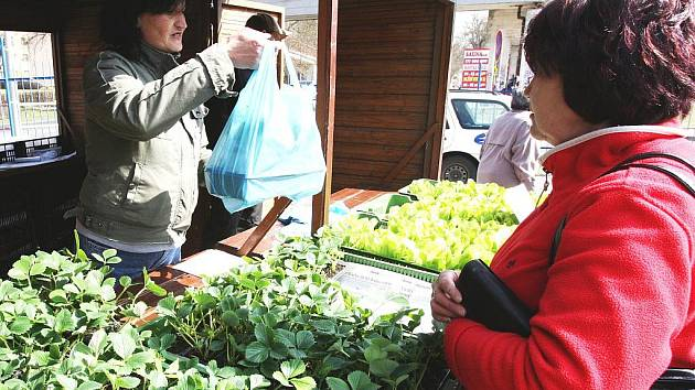 Zákazníci si pochvalovali nabízené zboží a dostupnost tržnice v blízkosti stanic MHD.