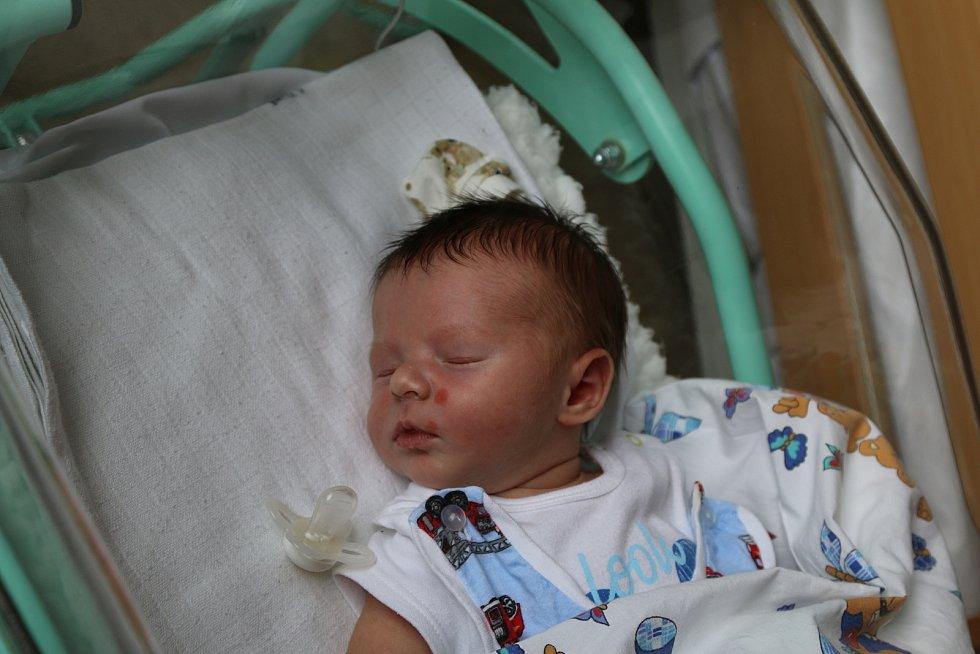 Karel Kroužek se narodil Dominice Frankové z Ústí nad Labem 1. června v 11.01 hodin v Ústí nad Labem. Měřil 51 cm, vážil 4,07 kg