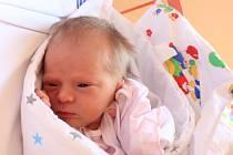 Bára Chmelinová se narodila v ústecké porodnici 26.6.2016 (18.12) Martině Strakové. Měřila 48 cm, vážila 2,73 kg.