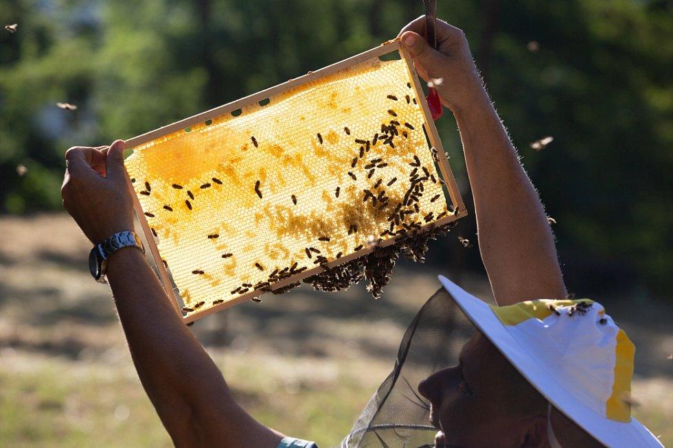 Instalace včelstev ve Vaňově