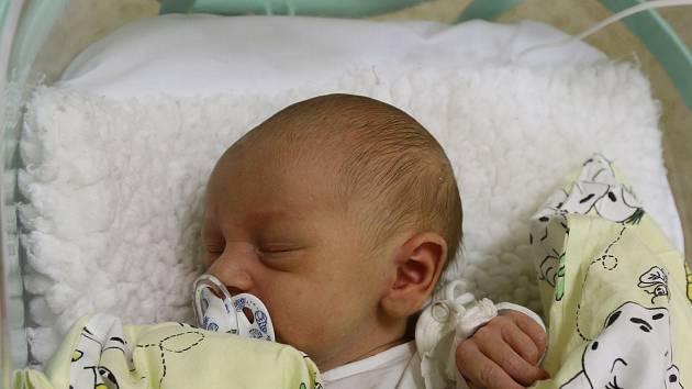 Dominik Mäsiár se narodil Ludmile Kadlecové z Teplic 13. října ve 21.50 hodin v Ústí nad Labem. Měřil 50 cm, vážil 3,67 kg