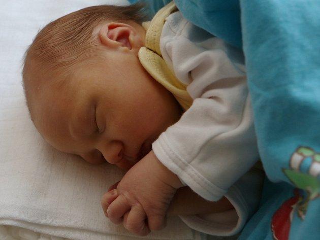 MAMINCE LENCE ŠORFOVÉ zOseka se přímo na Štědrý den narodil vústecké Masarykově nemocnici syn Zdeněk sváhou 3330gramů a mírou 49centimetrů.