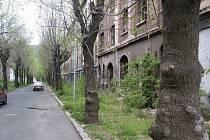 Mezi skutečně nejostudnější lokality města patří ulice Na Nivách.
