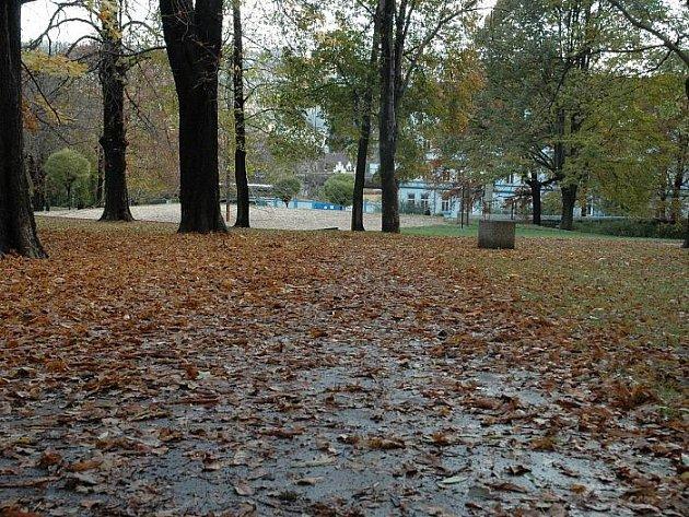 Přišel podzim a městské chodníky zaplavilo spadané listí. Někteří lidé si stěžují na nepořádek.
