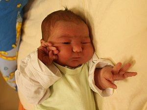 Antonín Škréta se narodil Barboře Škrétové z Chabařovic 18. října ve 12.26 hod. v ústecké porodnici. Měřil 51 cm a vážil 3,81 kg.