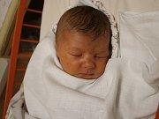 Laura Kuchařová se narodila Kateřině Trapaniové z Litoměřic 8. listopadu v 8.27 hod. v ústecké porodnici. Měřila 51 cm a vážila 3,98 kg