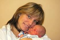 Jiří Wetzstein, se narodil v ústecké porodnici dne 26. 11. 2013 (13.30) mamince Tereze Wetzsteinové, měřil 50 cm, vážil 3,25 kg.