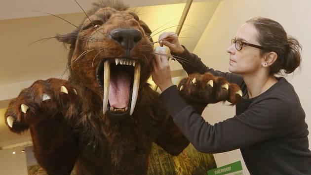 Predátory od prvohor po čtvrthory ukáže expozice ústeckého muzea.