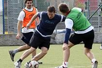 Na úvodním tréninku Ústeckých Lvů se na umělé trávě Městského stadionu sešlo celkem 22 hokejistů. Ti si proti sobě zahráli fotbal.