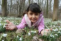 Jaro je tu. Ilustrační foto.