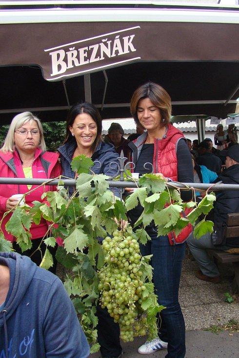 Den vína v Brné