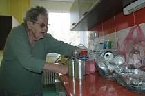 Důchodkyně Irena Ledinská už řadu let pečlivě třídí veškerý odpad ze své domácnosti a odevzdává ho. Tvrdí, že jde o suroviny, které by neměly skončit na skládce.