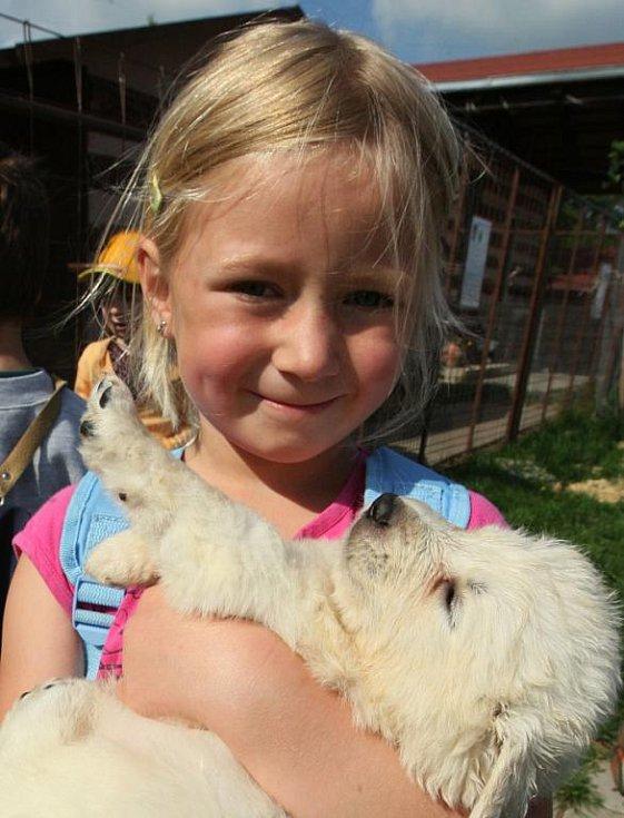 Díky nadšencům se na farmě v Ředhošti uskutečňují zábavná dopoledne pro děti, která umějí perfektně doplnit teoretickou výuku v mateřince a na základní škole