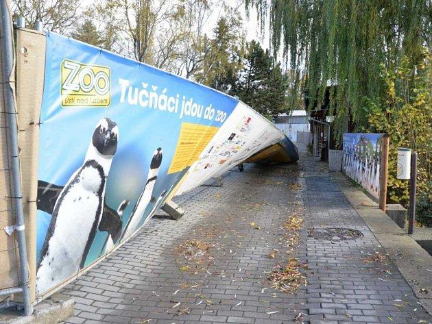 Vítr napáchal škody ivústecké zoo.