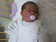 Hana Doušová se narodila Haně Benčíkové z Rytířova 7.ledna v 1.56 hod. v ústecké porodnici. Měřila 49 cm a vážila 3,05 kg