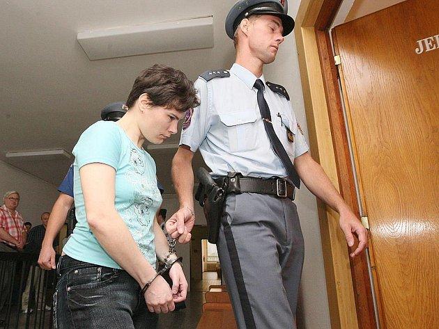 Hlavní líčení s obžalovanou Hanou Klemmovou z Lovosic, která podle obžaloby porodila a poté usmrtila novorozence letos v lednu, začalo v Ústí nad Labem u Krajského soudu.