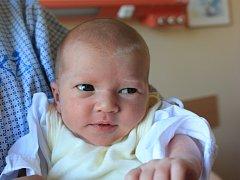 Lucie Švermová se narodila v ústecké porodnici 14.7.2016 (11:37) mamince Lence Švermové. Měřila 49 cm, vážila 3,15 kg.