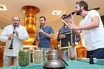 3)Hudebníci zaimprovizovali a zahráli surovinám k výrobě piva Pilsner Urquell, aby se mu dobře zrálo a na Pilsner Festu chutnalo.
