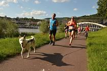 Česko běží dál na ústeckém Střekově