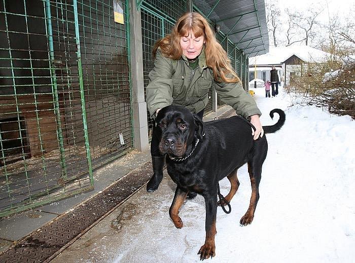 Pracovnice útulku Naděžda Eimutová, která první zjistila po příchodu do práce, že někdo vypustil téměř všechny psi z kotců.
