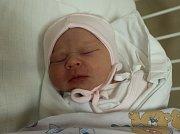 Anežka Kocourková se narodila Haně Zvoníkové z Ústí nad Labem 19. října ve 14.42 hod. v ústecké porodnici. Měřila 47 cm a vážila 2,81 kg.
