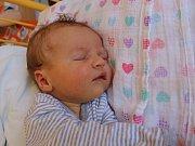 Anna Svozilová se narodila v ústecké porodnici 28. 5. 2017 (2.57) Veronice Svozilové. Měřila 51 cm, vážila 3,6 kg.