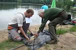 Rybářské závody. Ilustrační foto.